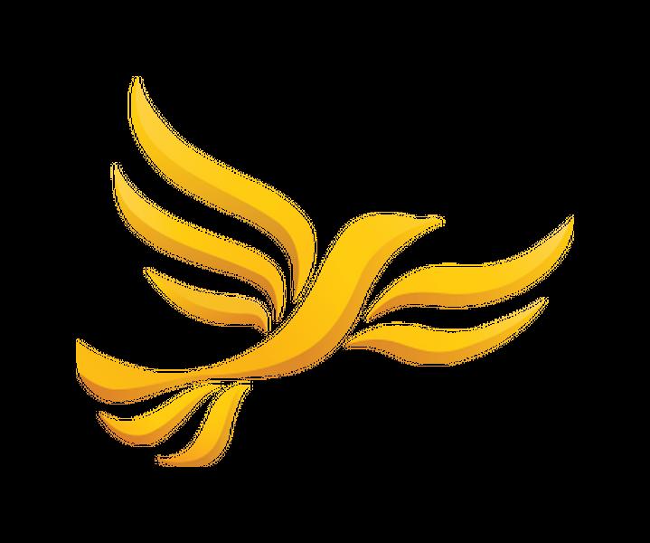(c) Centraldevon-libdems.org.uk